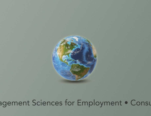 Management Sciences for Employment • Consulting